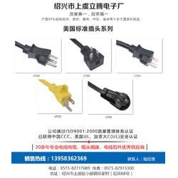电源线插头,立腾电子(在线咨询),衢州电源线图片