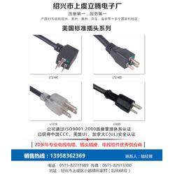 插头电源线、立腾电子(在线咨询)、电源线图片