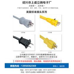 电源线、立腾电子、插头电源线图片