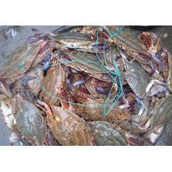 南京大闸蟹、南京鲍鲜汇水产品、大闸蟹养殖场图片