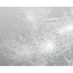 鹅绒品牌,俊宏羽绒,镇江市鹅绒图片