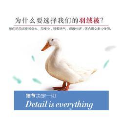 俊宏羽绒(图)|鸭绒多少钱一斤|鸭绒图片