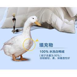 鸭绒厂家-俊宏羽绒(在线咨询)鸭绒图片