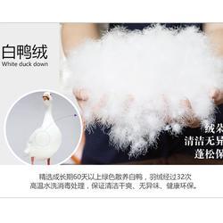 鹅绒批厂家-鹅绒-俊宏羽绒(查看)图片