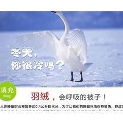 鹅绒品牌,俊宏羽绒(在线咨询),合肥鹅绒图片