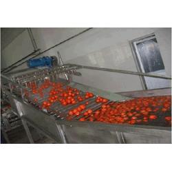 蔬菜清洗机_蔬菜清洗机_诸城双兴机械(优质商家)图片