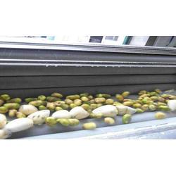 土豆毛辊清洗机参数,诸城双兴机械,吉林土豆毛辊清洗机图片