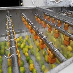 黑龙江草莓清洗机多少钱-诸城双兴机械图片