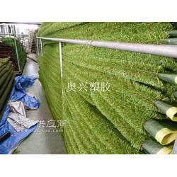 工程装饰人造草坪厂家图片