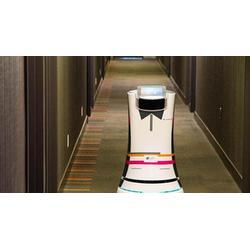 商用机器人哪家好、河南祥鼎股份(在线咨询)、南阳商用机器人图片