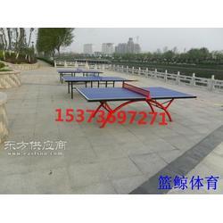 家用乒乓球台,家用普通乒乓球台去哪买图片