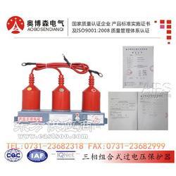 GPT-DJ-8/18过电压保护器说明书奥博森电气图片