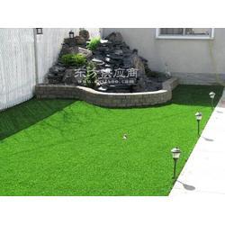 人造草坪仿真草坪仿真草坪哪有卖塑料假草坪图片