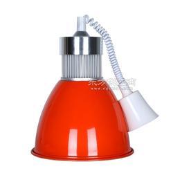 LED生鲜灯厂家图片