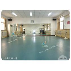 立美建材_芭蕾舞PVC运动胶地板_普洱PVC运动胶地板图片