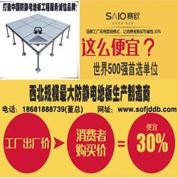 成都防静电地板-抗静电地板-赛欧防静电地板(优质商家)图片