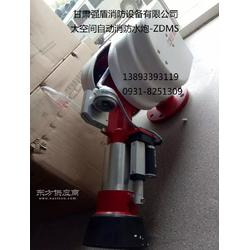 ZDMS消防水炮 强盾消防设备有限公司图片