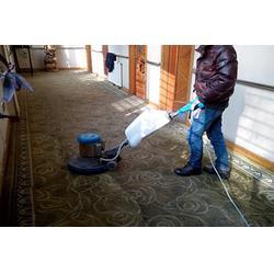 地毯清洗哪家专业、安逸物业管理、地毯清洗图片