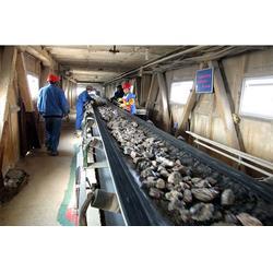 山西永青矿机工程 (图)、10米皮带输送机、内蒙皮带输送机图片