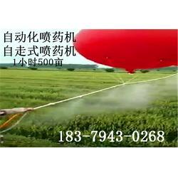 甘蔗病虫害防治_防治_飞神玩具厂良心公司(查看)图片