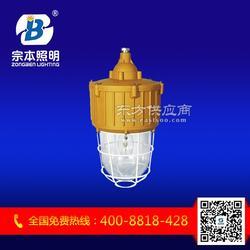 GTZM8701无延时启动全方位防爆强光节能泛光灯图片