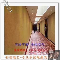 吊顶硅藻泥涂料厂家_吊顶硅藻泥_彩韵墙艺坊质量可靠(查看)图片