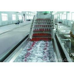 新疆蔬菜清洗机、蔬菜清洗机 全自动、诸城民泰食品机械图片