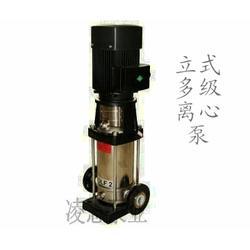 转子泵,凌志泵业(在线咨询),转子泵图片