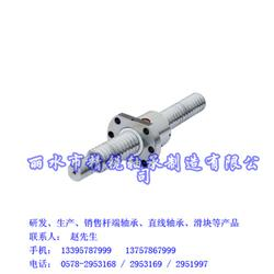 滚珠丝杆-精锐轴承产品齐全(在线咨询)-滚珠丝杆图片