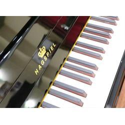 福州钢琴培训哪家好,福州天籁之音乐器培训,福州钢琴图片