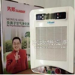 家用空气净化器 空气生态仪 OEM会销马帮 礼品图片