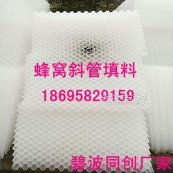 塑料水处理填料蜂窝斜管填料常年加工销售图片