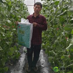 北京水溶肥,水溶肥排名,济南瑞莱肥料(优质商家)图片
