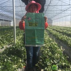 水溶肥配方、济南瑞莱水溶肥、北京水溶肥图片