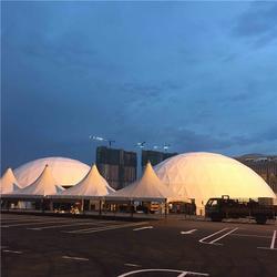 上海活动透明球形帐篷、球形帐篷、巡展球形帐篷(查看)图片