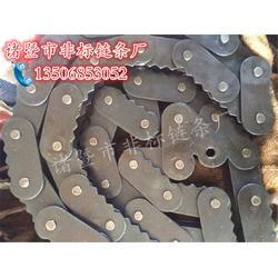 钢管输送链条订做-【诸暨非标】信誉可靠-钢管输送链条图片