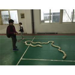 苏州羽毛球教练、羽毛球、苏州腾龙体育图片