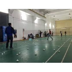 专业羽毛球培训中心-常熟羽毛球-世纪腾龙体育图片