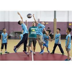 专业的篮球培训、吴中篮球、苏州腾龙体育(查看)图片