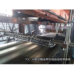 许昌钢绳芯输送带检测-威尔若普-钢绳芯输送带检测仪器图片