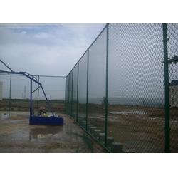 球场围网围栏生产厂家、天津球场围网围栏、强森厂家直销图片