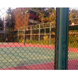 学校体育场围网施工|强森体育器材|体育场围网图片