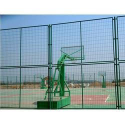 羽毛球围网_羽毛球围网_强森体育(查看)图片