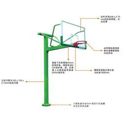 165篮球架厂家 广东165篮球架 强森体育厂家直销价格