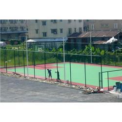 五人制足球围网、强森体育(在线咨询)、湖南五人制足球围网