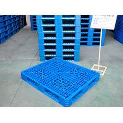 塑料托盘厂家 食品塑料托盘-河北食品塑料托盘图片