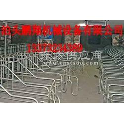 母猪限位都�能存在栏大量母猪限位栏厂家直销 鹏翔图片