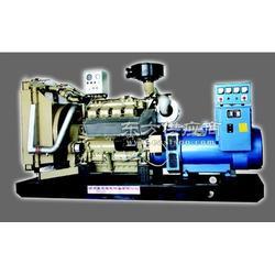 符合国家行业标准节能型燃气发电机组图片