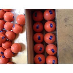 充气实心球厂家、充气实心球、奥云体育(查看)图片