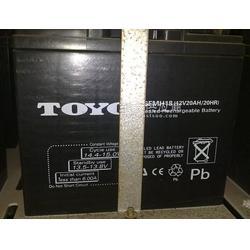 东洋蓄电池6FM60 12V60/AH厂家销售图片